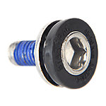 Screw, M8X1.25, BB Axle, StarTrac